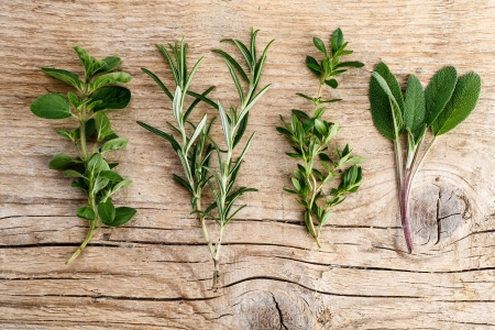 Single twigs of Thyme, Sage and Rosemary with Oregano on Wooden Board photo