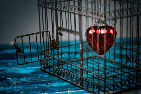 Red Heart trapped inside an old rusty bird cage