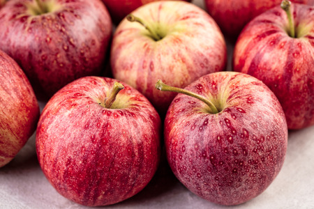 stoneware: Fresh and Ripe Red Apples on Stoneware Plate