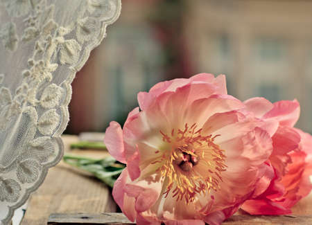 colored window: Pastel Colored Peony Flowers at the Window