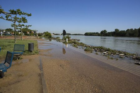 deluge: View of Rhine High Water in Speyer in June 2013 on a sunny day