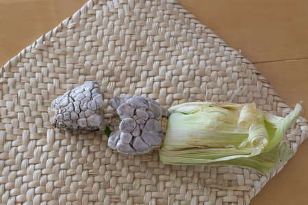 The huitlacoche or cuitlacoche, is a fungus of the family Ustilaginaceae Mexico.