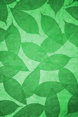 Leaves Pattern wallpaper photo