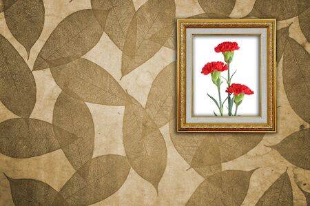 Carnation in Golden Frame on Leaves Pattern wallpaper Stock Photo - 8402056
