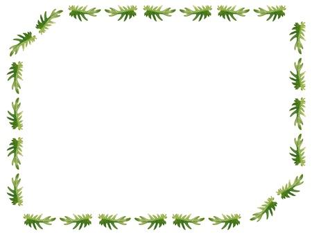 xanadu: Philodendron xanadu Leaves Frame on white background Stock Photo