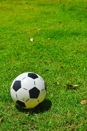 Soccer ball on the grass Stock Photo - 13621022