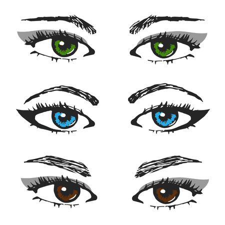 eyebrows: set of female eye sketches.different types of eyebrows and the color of the pupil. Illustration