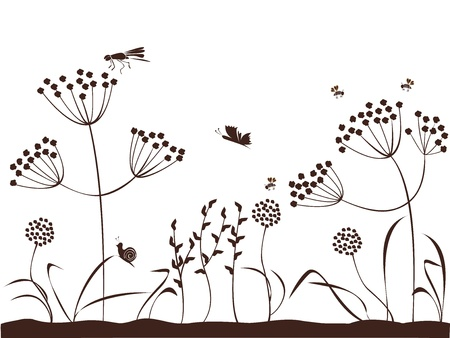 Summer  The background of nature with plants, flowers, insects Illustration