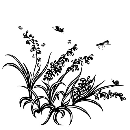 Summer background of plants, grass, flower, insects Vector
