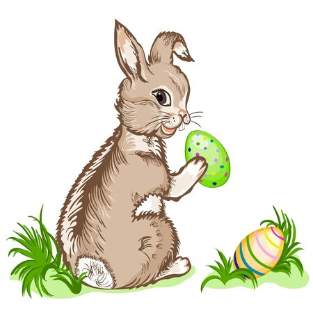 vector illustration ester bunny Stock Vector - 17585209