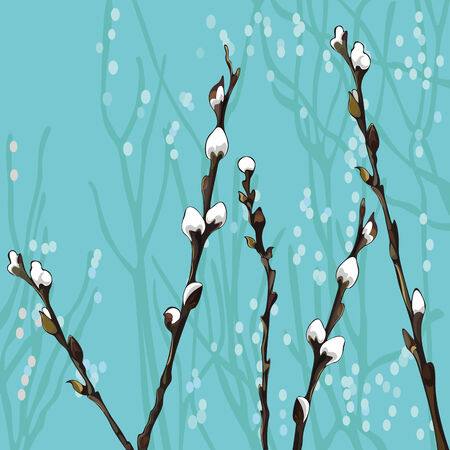 pussy willow: Beautiful pussy willow branches. Spring background Illustration