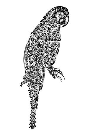 ara: Decorated parrot bird macaw ara with ornament pattern black Illustration