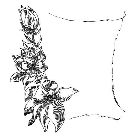 vegatation: Floral background flower frame black white