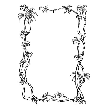 Liana a woody climbing plant in tropical rainforests. Template frame black on white background