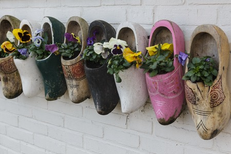 marken: Old wooden clogs with blooming flowers hanging on a white wooden wall ,Marken, The Netherlands
