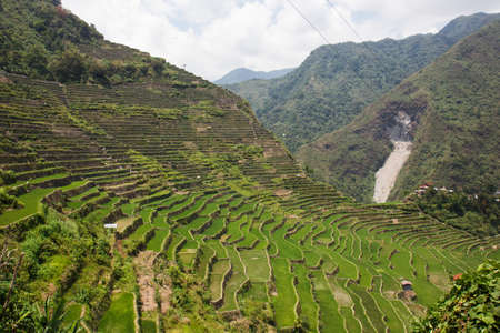 Panoramic view of the Batad rice field terraces in Ifugao province, Banaue, Philippines