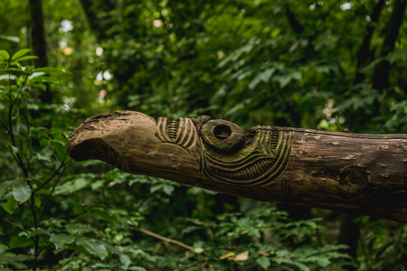 Maori wooden sculpture in the forest
