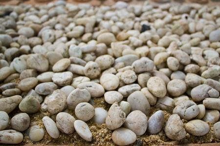 white pebbles in the garden