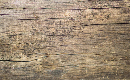 brown backgrounds: old wood background Stock Photo
