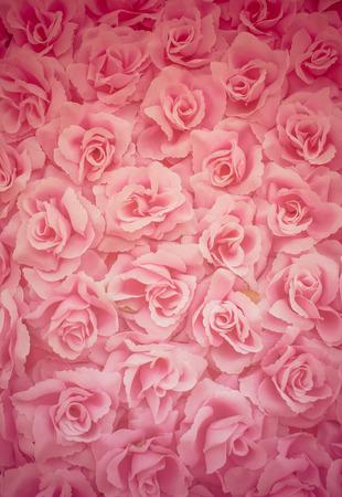 rosa tela del fondo rosa