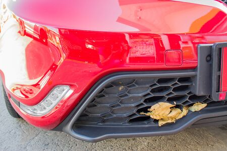 dried leaf on front car bumper Stock Photo