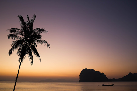 long tail: silhouette photo of coconut tree with the beach and long tail boat background