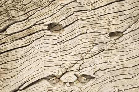 wood railroads: an old woooden sleeper track background look like human face
