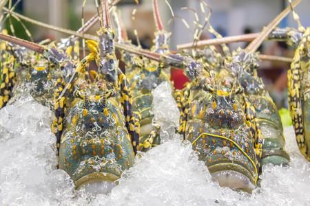 spiny lobster: spiny lobster in ice tray at  market Stock Photo
