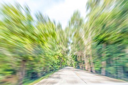 gree: abstract motion blurred photo of road along natural gree tree