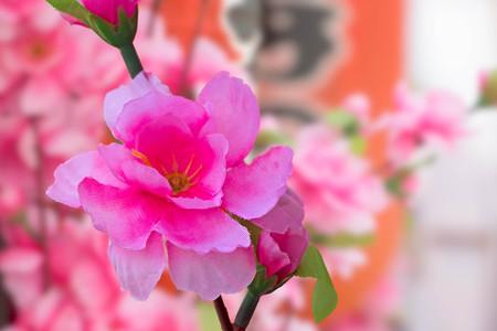 artificial sakura flower for decoration Stock Photo