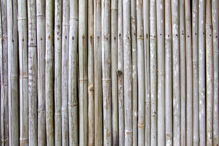 close up of bamboo fence background 写真素材