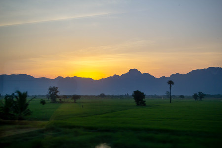 landscape of sunrise on moutain in rice field