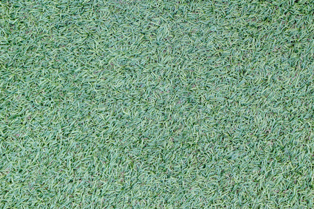 closeup of artificial green grass