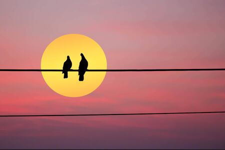 silhouette of two birds on wire with moon and red sky background