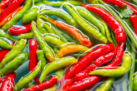 fresh  hot chilli peppers in water