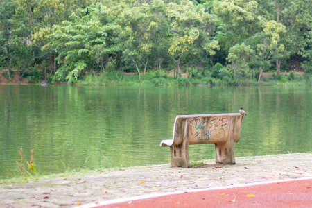 bird on lonely cement chair in the park Imagens