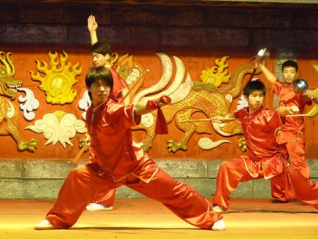 global village: DUBAI, UAE - JANUARY 21: Chinese Martial Artists contemporary Performance at annual Dubai Global Village Shopping Festival January 21, 2010 in Dubai, United Arab Emirates.