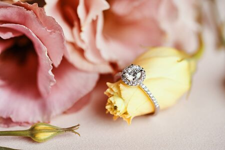 Diamond Ring and Pink Flower Background. Close up of an elegant engagement diamond ring. Standard-Bild