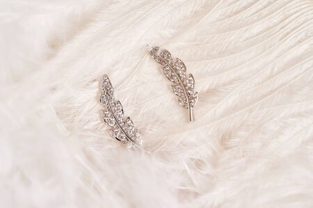 Silver brooch in the shape of a feather, with small diamonds isolated on a delicate background of feathers. Couple. Women Accessories