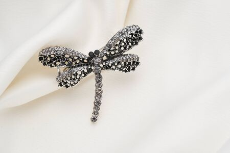 Silver brooch shaped like a dragonfly with small diamonds, isolated on white background. Women Accessories