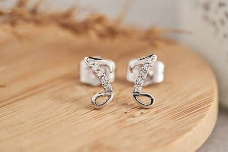Close up silver stud earrings, with white crystals and diamonds. Beautiful earrings on wooden plate Women accessories, woman's jewelry.