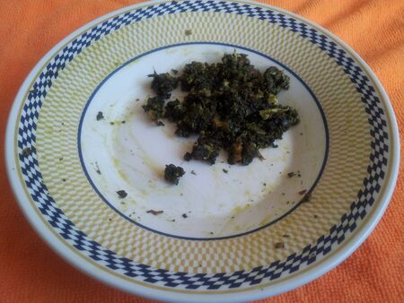 A close-up on a plate: Palak Saag, a traditional Pakistani cuisine, served in a ceramic plate on orange background