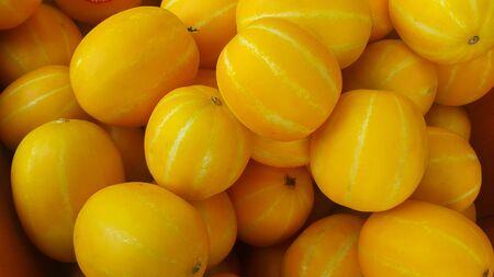 Stos świeżego żółtego melona lub melona kanaryjskiego lub zimowego melona wprowadzany na rynek do sprzedaży. Melon kanaryjski lub zimowy melon to duży, jasnożółty, wydłużony melon o jasnozielonym do białego miąższu.