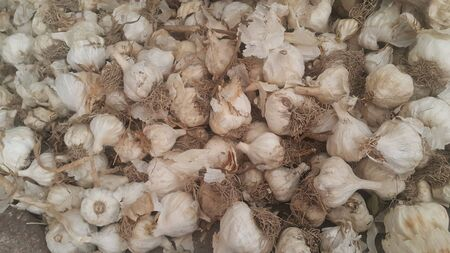 Garlic is aromatic and flavorful herb for consumption and use in spices and for medicinal purposes. Close-up view of dry garlic bulbs background. Stock Photo