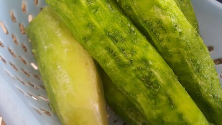 Closeup of green gourd pile in market for sale. Vegetables background with copy space for text