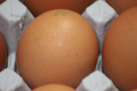 Closeup view with selective focus on fresh farm chicken eggs in an egg-carton or egg holder or paper tray placed in market for sale