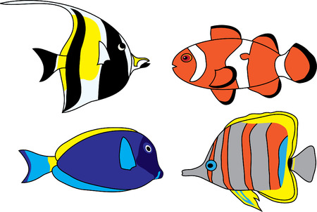 clown fish: Set of four colored tropical fish