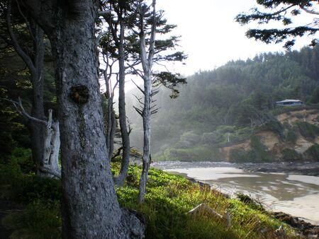 fog coming in on the beach Фото со стока