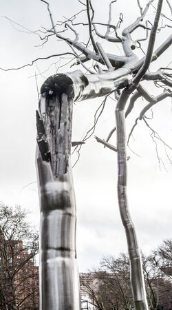coexist: Monument to a broken tree that is made of a metal. Coexists with the natural trees , reminder. Editorial