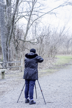 winter photos: Taking photos of Winter park grey and boring, trees and alley with  a use of a tripod Stock Photo